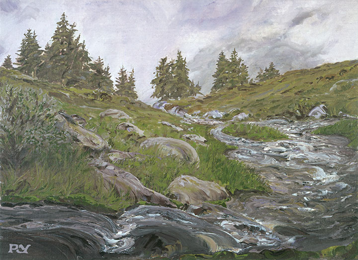 Mountain Stream, Val d`Anniviers